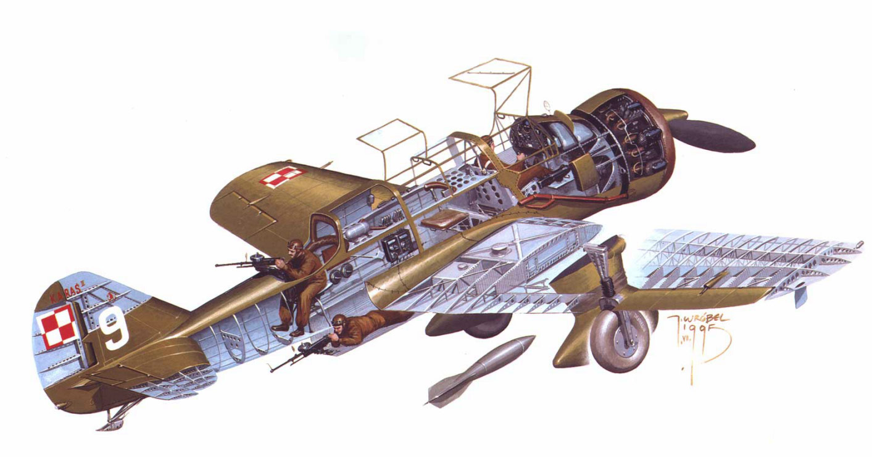 PZL.23 Karaś cutaway