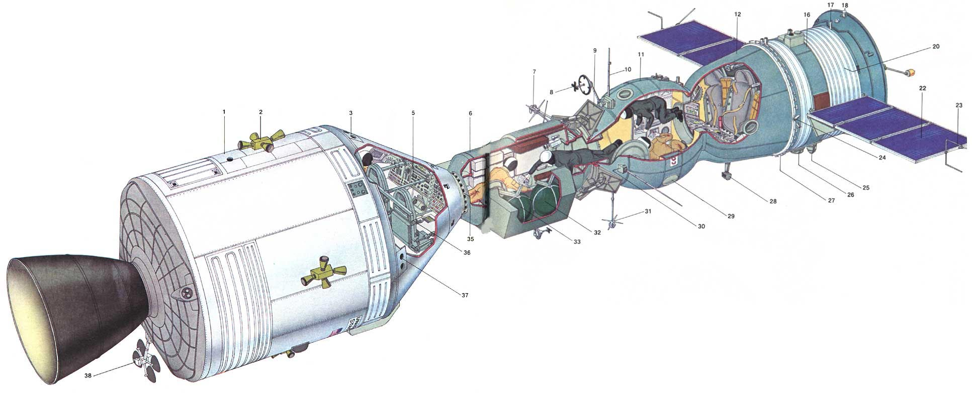 Apollo–Soyuz Test Project cutaway
