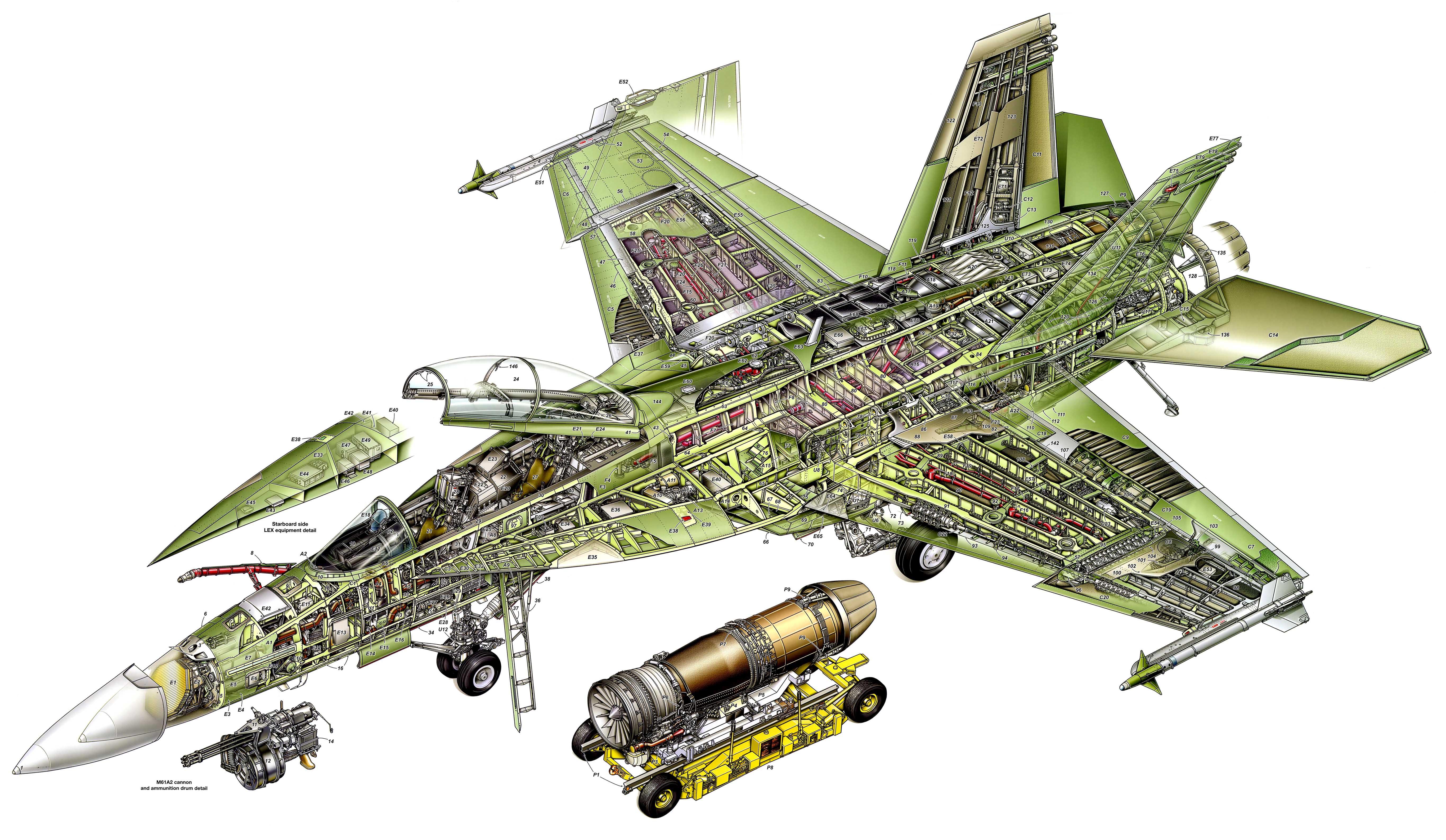 Boeing F/A-18E/F Super Hornet cutaway