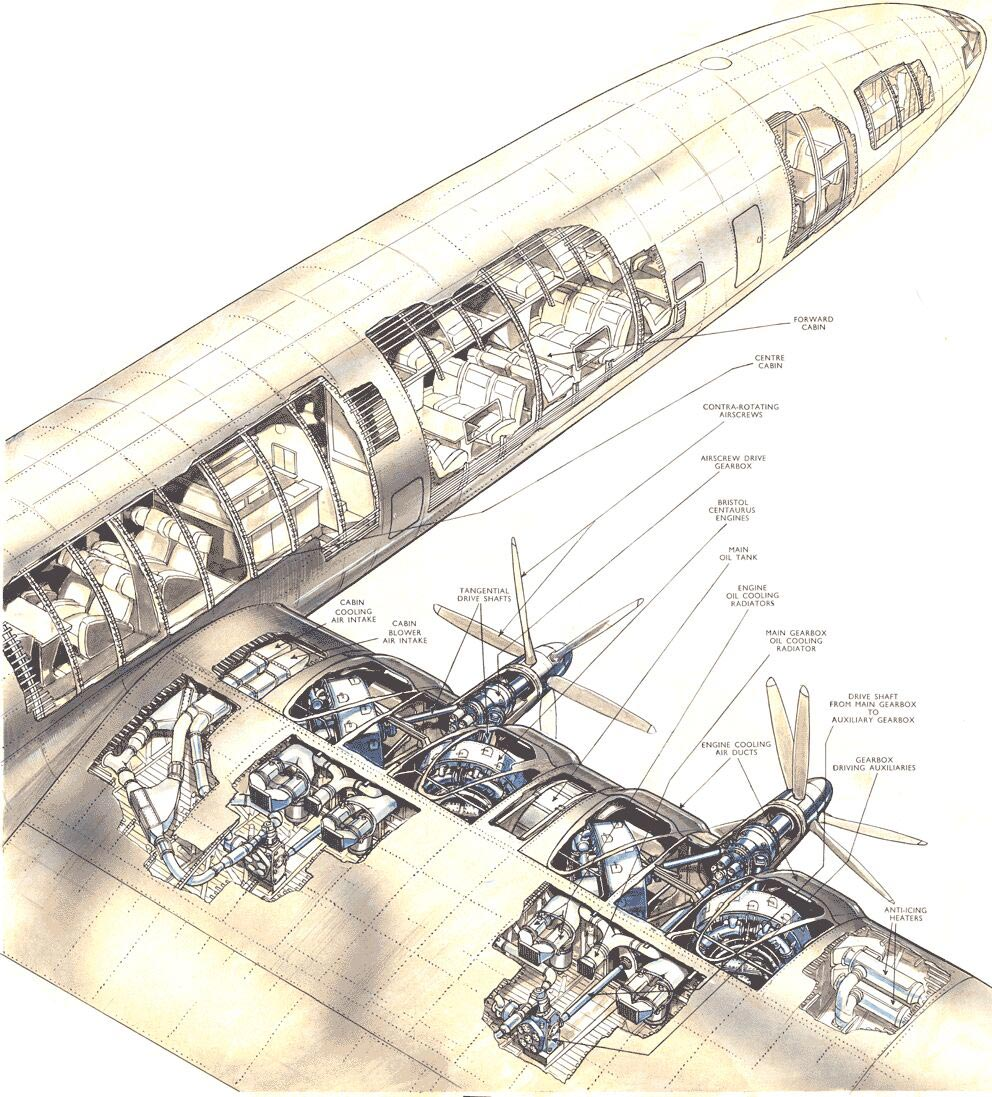 Bristol Brabazon cutaway