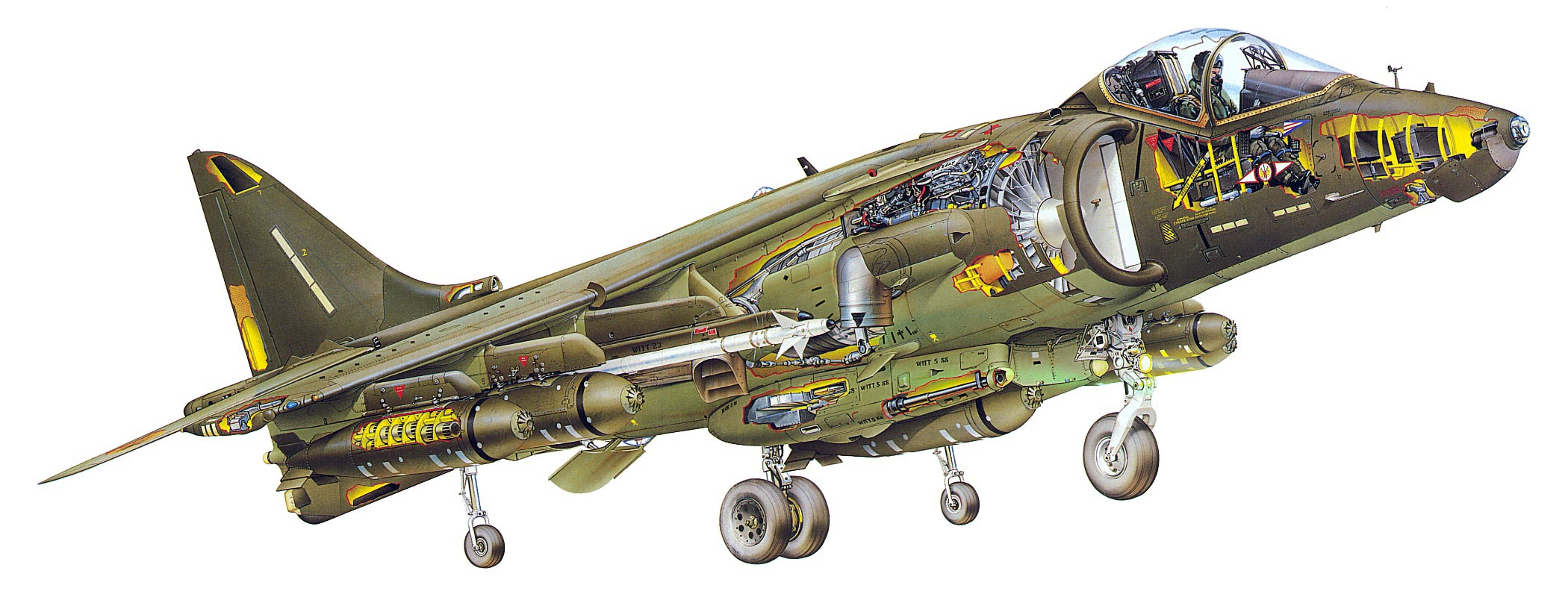 Sea Harrier cutaway