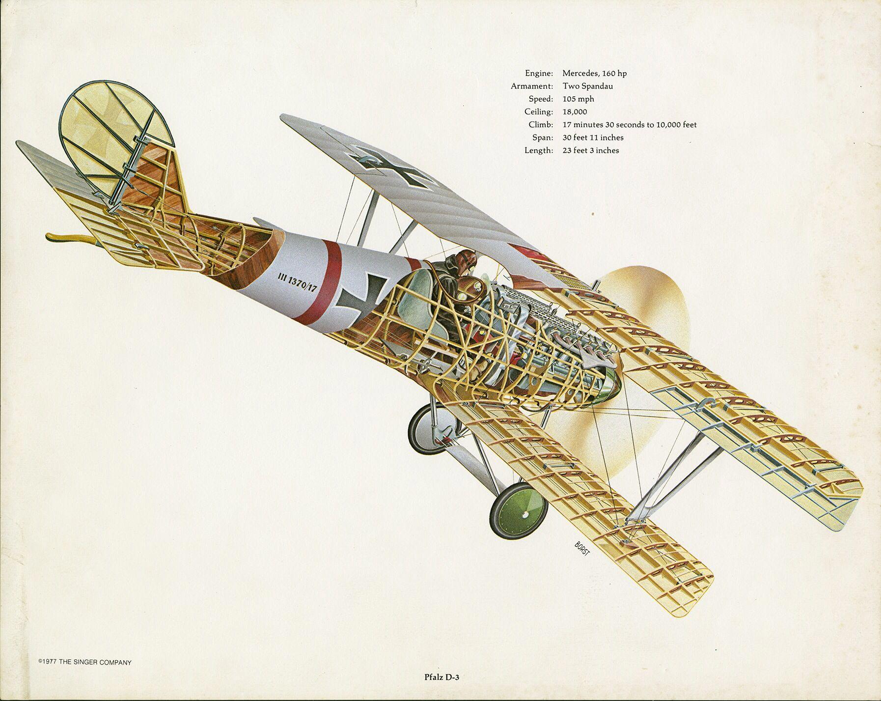 Pfalz D.III cutaway