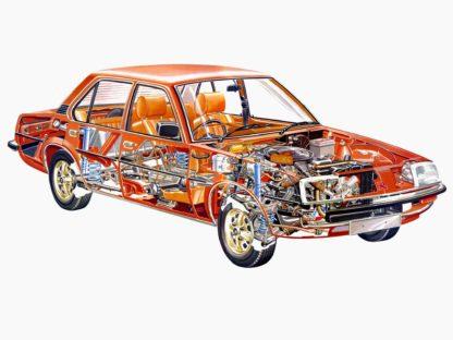 Vauxhall Cavalier cutaway