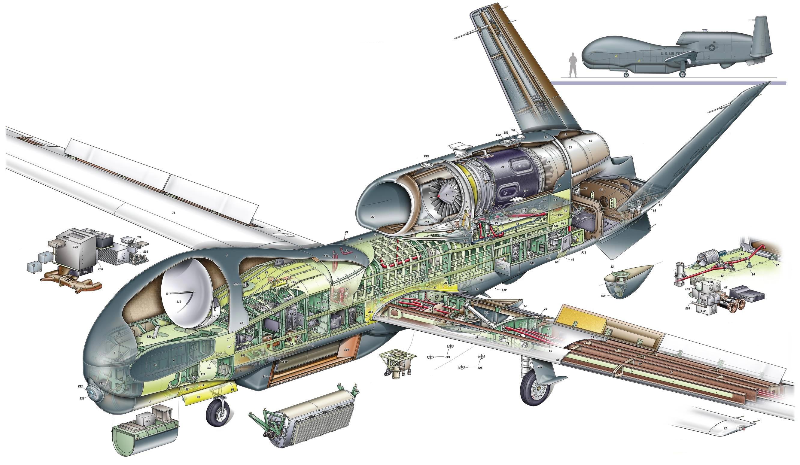 RQ-4 Global Hawk cutaway