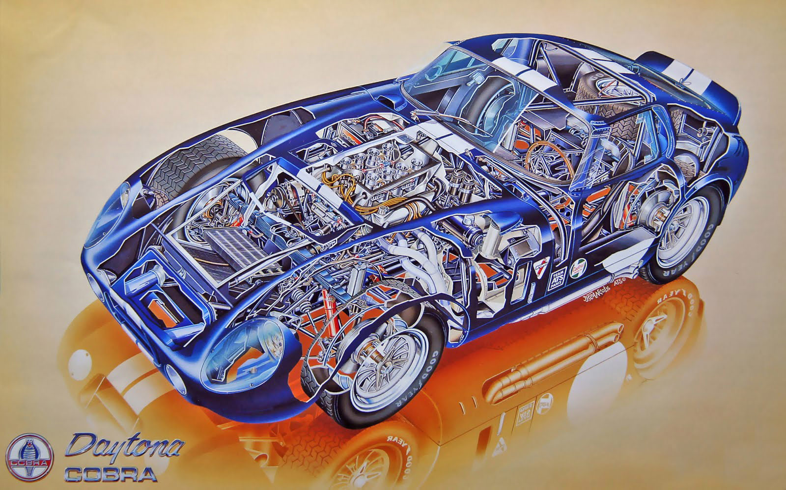Shelby Daytona cutaway drawing